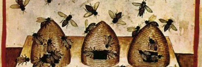 La favola delle api